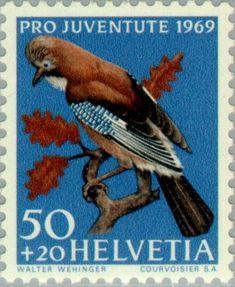 Znaczek: Eurasian Jay (Garrulus glandarius) (Szwajcaria) (Pro Juventute: Birds) Mi:CH 917,Sn:CH B389,Yt:CH 849,Zum:CH J231