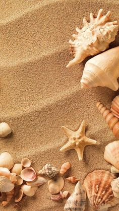 Wallpaper Plage , - Life and hacks Wallpaper Wide, Strand Wallpaper, Ocean Wallpaper, Nature Wallpaper, Wallpaper Backgrounds, Tropical Wallpaper, Pretty Wallpapers, Live Wallpapers, Cute Summer Wallpapers