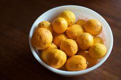 Meyer Lemon Ginger Concentrate