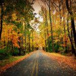 Fall in Deepwater in Salem County, NJ