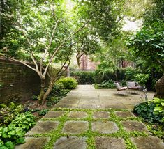 Bluestone Paving, Wisteria Trellis, Recycled Brick, Carroll Gardens, Stucco Walls, Sloped Garden, Ground Cover Plants, Shade Structure, Terrace Garden