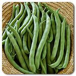Organic Kentucky Wonder Pole Bean