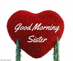 Looking for Good Morning Wishes for Sister? Start your day by sending these beautiful Images, Pictures, Quotes, Messages and Greetings to your Sis with Love. Good Morning Sister Images, Good Night Sister, Good Morning Photos, Good Morning Gif, Good Morning Greetings, Morning Pictures, Good Morning Wishes, Love Your Sister, Wishes For Sister