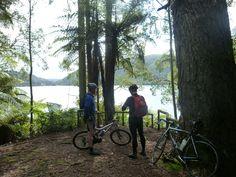 Lake Okareka, on way to Taupo