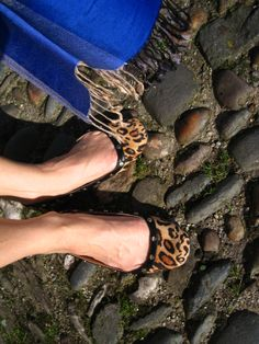 A touch of Leopard Miu Miu Ballet Flats, Touch, How To Wear, Shoes, Fashion, Moda, Zapatos, Shoes Outlet, Fashion Styles