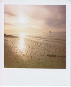 #polaroid #summer #ocean