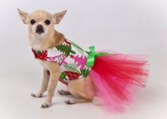 Christmas Trees Tutu Harness Dog Dress by KO Couture (www.kocouture.etsy.com)