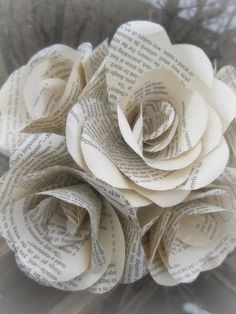 book page roses <3