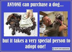 Anyone can purchase a dog...but it takes a very special person to adopt one!