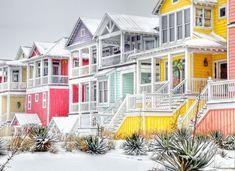 Snowy Beach Scenes