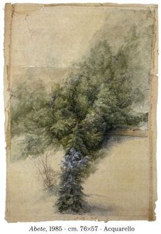 - Acquarello - yama-bato: By Jean-Pierre Velly [+]. Link: (Source: sirobtep, via lamareehaute). Botanical Drawings, Botanical Illustration, Illustration Art, Art Et Nature, Watercolor Kit, Contemporary Abstract Art, Nature Paintings, Beautiful Drawings, Painting & Drawing