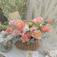 Flowers Nature, My Flower, Wild Flowers, Beautiful Flowers, Spring Aesthetic, Flower Aesthetic, No Rain, Tulips, Planting Flowers