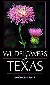 In her popular Wildflowers of Texas, native-plant expert Geyata Ajilvsgi gives lay readers the most comprehensive field guide currently available on the state�s abundant wildflowers. This latest edition contains information on 482 of the most common species found in the state�s major vegetation zones. Each entry includes a full-color photograph of the flower on the page facing the entry, bloom period, range and habitat, and botanical description. A special note in each entry explains the…
