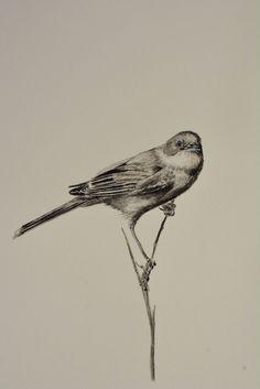 Dessin à l'encre Bird, Animals, Ink Drawings, Animales, Animaux, Animais, Birds, Animal