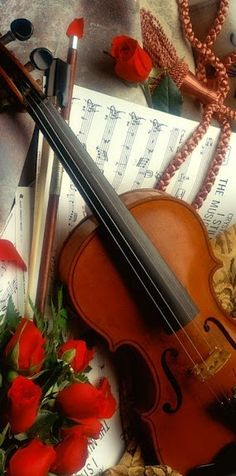 Roses and Violin = Romance