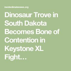 Dinosaur Trove in South Dakota Becomes Bone of Contention in Keystone XL Fight…
