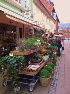 flower shop~ Helsingor Denmark