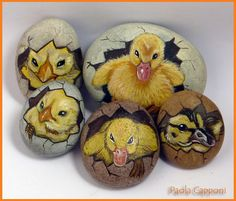 Gruppo pulcini | Flickr - Photo Sharing!