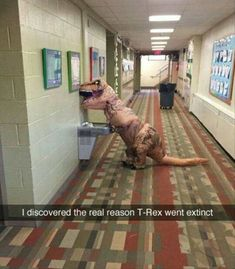 Funny Pictures Of The Day - 36 Pics #funny #picture #meme