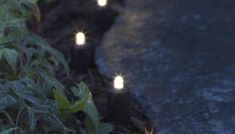 DIY backyard lighting ideas and tutorials! 15 beautiful ideas for your backyard. Tips to help you find the best type of lighting for your hangout space this summer! Don't get caught in the dark with this lighting inspiration. Backyard Lighting, Outdoor Lighting, Lighting Ideas, Landscape Lighting Design, Thing 1, Types Of Lighting, Solar Lights, Backyard Landscaping, Backyard Ideas
