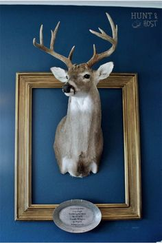 French country décor. incorporating your man's trophy into your home. #shabbychic #antlers #sharpielove www.huntandhost.com