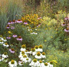 roy-diblik-the-know-maintenance-garden-4.jpg (1000×980)