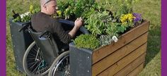have no idea what is written on this webpage, but love this raised garden for wheelchair residents