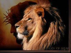 Sacrifice of the Lamb...Lion of Judah