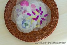 Laminated Flower Exploration for Babies
