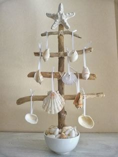 sea shell tree