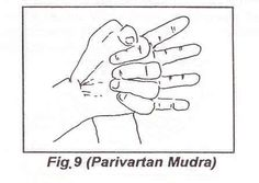 By practicing for 3 days, this mudra cures insomnia and can lead to sound sleep and no bad dreams. The body will rest easily and comfortably...