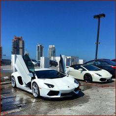 Awesome Lamborghini Rental Miami Fl- Would You Fear Super Car Purchasing? Examine These Pointers about Lamborghini Rental Miami Fl.  Do you need to buy a new Lamborghini? Does the method frighten you? Stay relaxed, absorb this post, and adhere to the great guidance to get the correct auto.