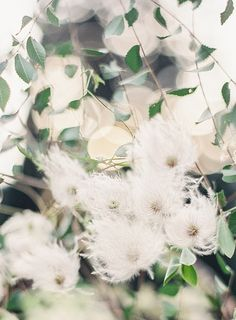 www.joeykennedyphotography.com