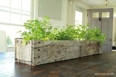 Migonis Home: Kitchen Herb Garden: Maybe for our weird little balcony?!