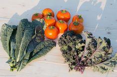 Grădina de la țară - de la pasiune la o mică afacere de familie - gardenbio.ro Vegetables, Food, Plant, Lawn And Garden, Essen, Vegetable Recipes, Meals, Yemek, Veggies