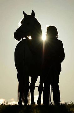 As the sun sets....Equestrian Lifestyle Magazine