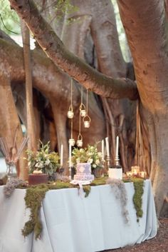 Get expert wedding planning advice and find the best ideas for wedding decorations, wedding flowers, wedding cakes, wedding songs, and more. Enchanted Garden Wedding, Rustic Garden Wedding, Forest Wedding, Woodland Wedding, Forest Party, Forest Theme, Wedding Reception, Our Wedding, Dream Wedding