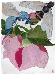 Sarah Graham, artist, botanical works on paper, 2008 to present. Art And Illustration, Botanical Drawings, Botanical Prints, Art Floral, Sarah Graham Artist, Flower Artists, Whimsical Art, Art Sketchbook, Art Techniques
