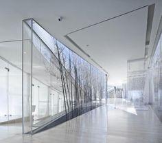 minimal glass architecture