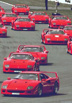 So many Ferrari F40 !