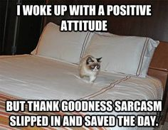 Thanks sarcasm…