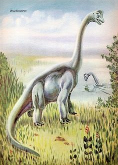 Image of: Love In The Time Of Chasmosaurs Vintage Dinosaur Art Dinosaurs And Other Prehistoric Animals Pinterest 53 Best Dinosaurs Images Dinosaur Art Prehistoric Animals
