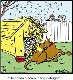Too many suds. Animal Pics, Animal Quotes, Funny Animal Pictures, Funny Animals, Cute Animals, Fun Comics, Funny Cartoons, Peanuts, Comic Strips