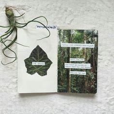 "mercurialmilk: ""lots of nature imagery… """