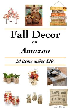 Such pretty Affordable Fall decor!! All under $20! Can't decide my favorite!