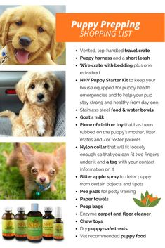 Puppy And Kitten Starter Kit Dog Care Tips Puppy Starter Kit