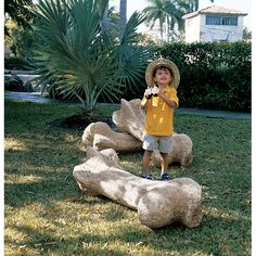Dino Bones Unusual Garden Ornaments, Garden Gnomes, Summer Reading Program,  Yard Decorations,