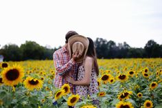 Young love in a sunflower field, sunflower photo shoot, couples photography…