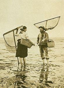 History of fishing - Wikipedia, the free encyclopedia