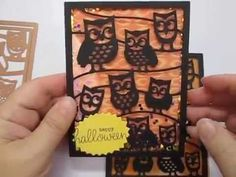Shaker Card Using Spellbinders Decorative Card Front It's A Hoot